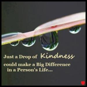 Drop of Kindness